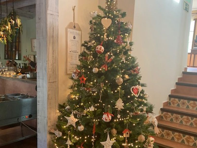 navidad malaga cortijo salia